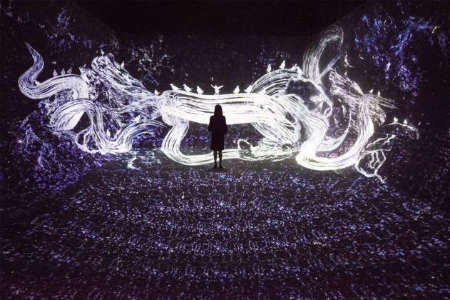 Crows are Chased and the Chasing Crows are Destined to be Chased as Well, Transcending Space, teamLab, 2017