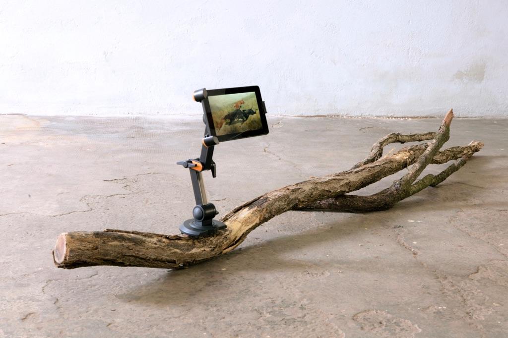 Edoardo Manzoni, Settembre, 2016. Ramo, staffa, tablet, immagine digitale. Dimensioni variabili