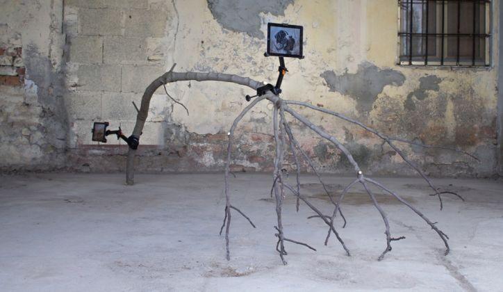 Edoardo Manzoni, Settembre, 2017. Ramo, staffa, tablet, immagine digitale. Dimensioni variabili
