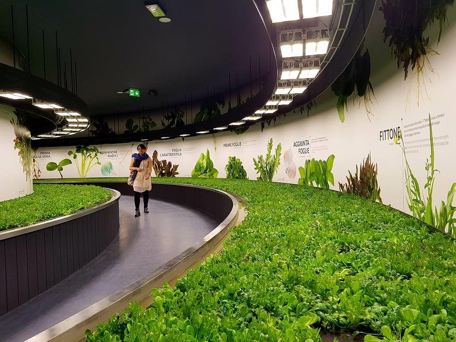 Ufficio Verde Comune Di Bologna : Laboratori di quartiere il primo incontro è al borgo panigale