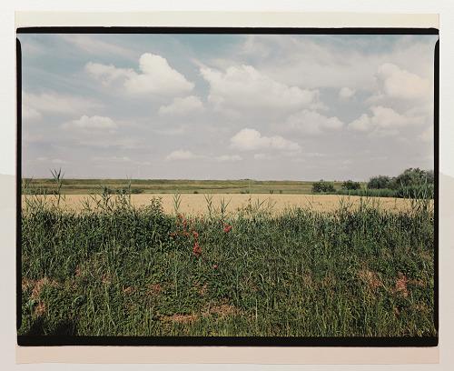 Luigi Ghirri Angiari – Argine dell'Adige, 1989/90 42x50,7 cm Fondo Luigi Ghirri, Fondazione Querini Stampalia onlus Foto Cameraphoto