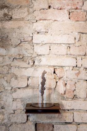 Museo della Merda. Alchimia. Il Coprolite sotto una campana in vetro. Photo © Henrik Blomqvist