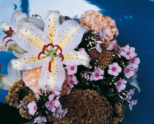 Nobuyoshi Araki, serie Flowers © Nobuyoshi Araki. Courtesy Fondazione Cassa di Risparmio di Modena