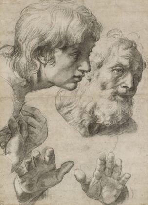 Raffaello, Studio di testa e mano (1519 20), Ashmolean Museum, Oxford © Ashmolean Museum, University of Oxford