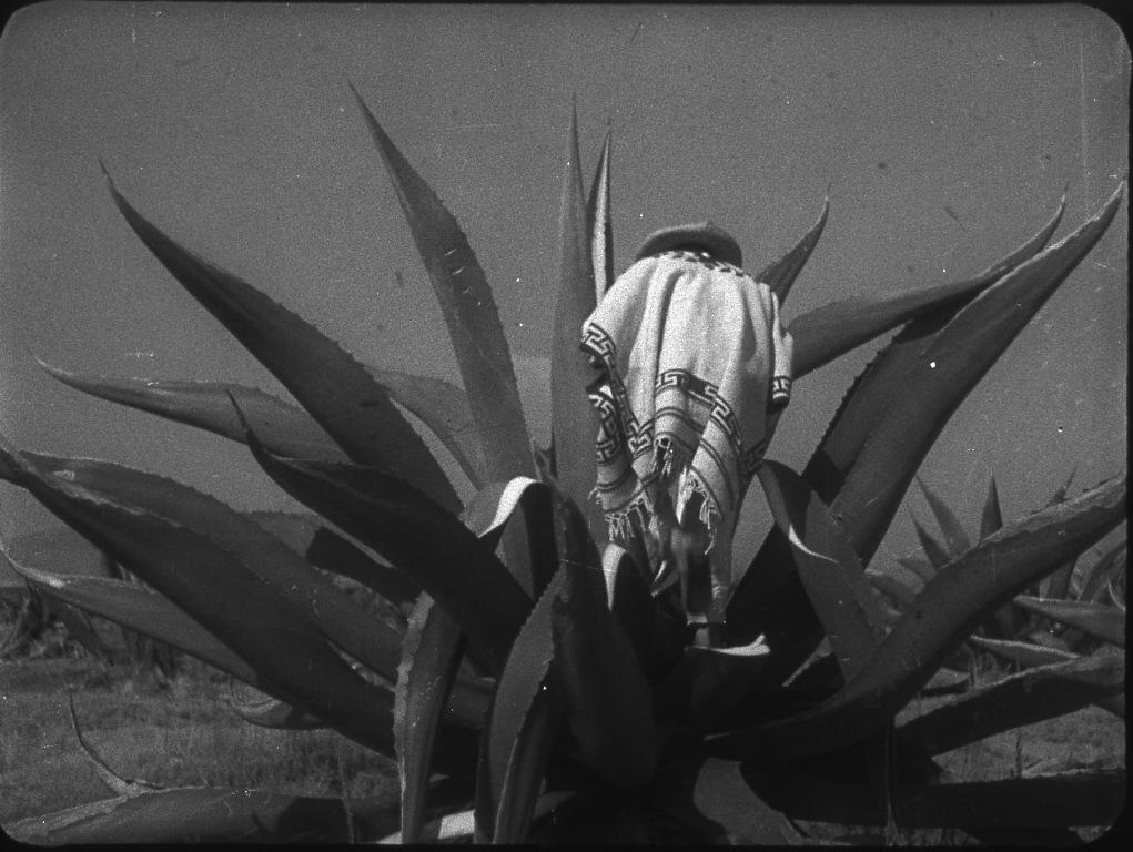 Sergej M. Ejzenštejn, Que viva Mexico!, 1930-32, dall'episodio Maguey
