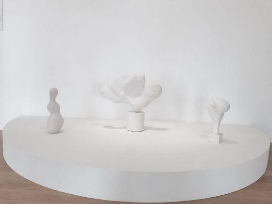 Biennale di Lione 2017. Jean Arp