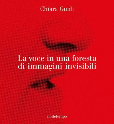 Chiara Guidi ‒ La voce in una foresta di immagini invisibili (Nottetempo, Milano 2017)