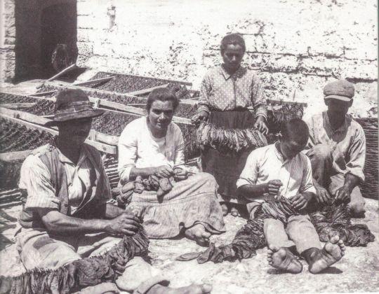 Giuseppe Palumbo, Contadini intenti ad infilare la faglia, 1924