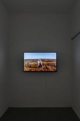Juan Zamora. ORA (bajo al cielo de la boca). Exhibition view at AlbumArte, Roma 2017