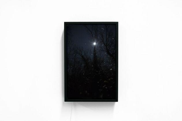 Silvia Mariotti, Pioggia lunare, 2017. Installation view at studio Milano