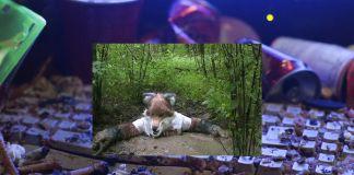 Still Life (Betamale), video still, HD video, 4 54 min, 2013 © Jon Rafman