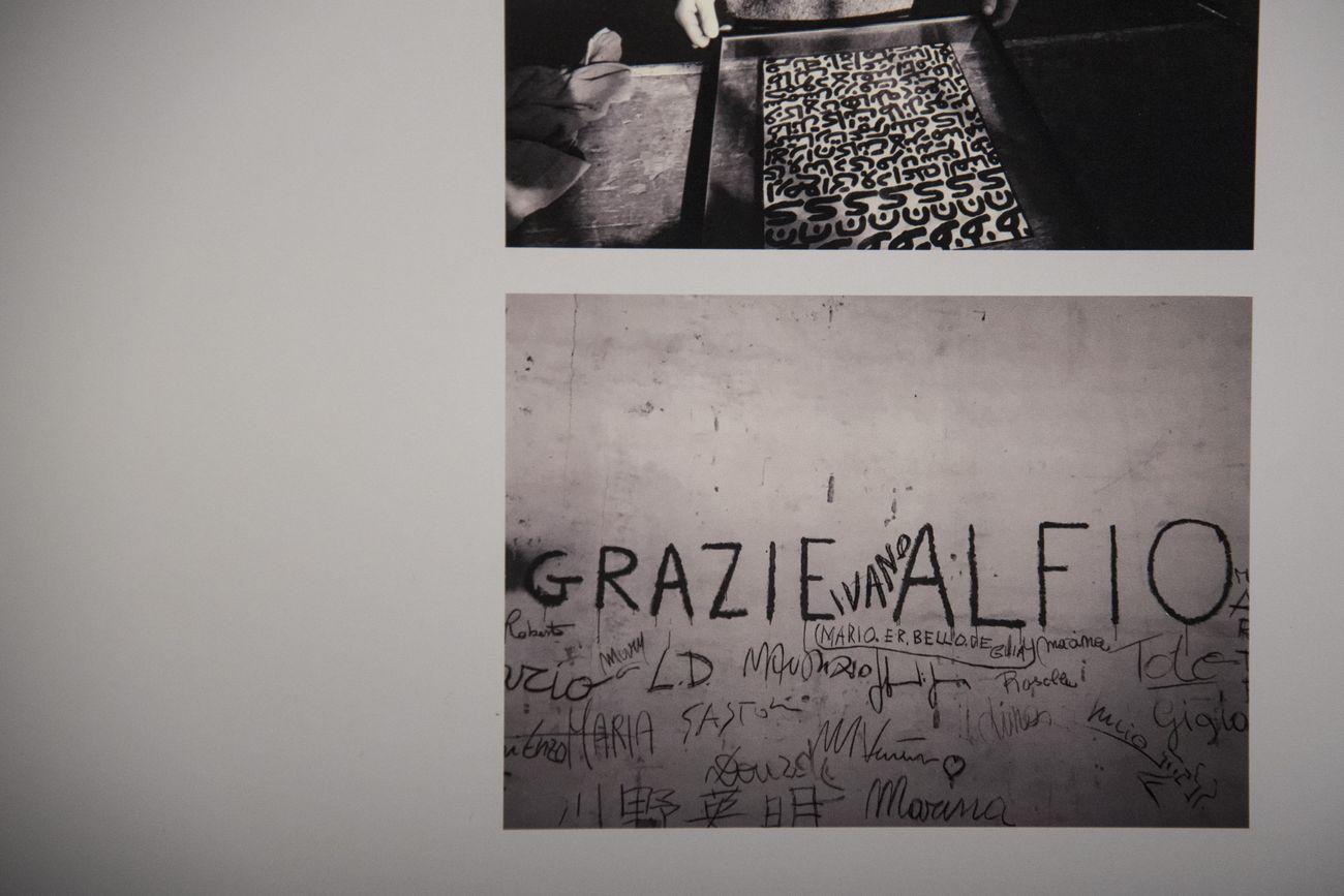 Alfio Vico. Il Falconiere. Exhibition view at GABA.MC, Macerata 2017. Photo Sonia Petrocelli