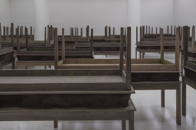 Doris Salcedo. Plegaria muda. Exhibition view at Solomon R. Guggenheim Museum, New York 2015. Courtesy Solomon R. Guggenheim Foundation. Photo David Heald