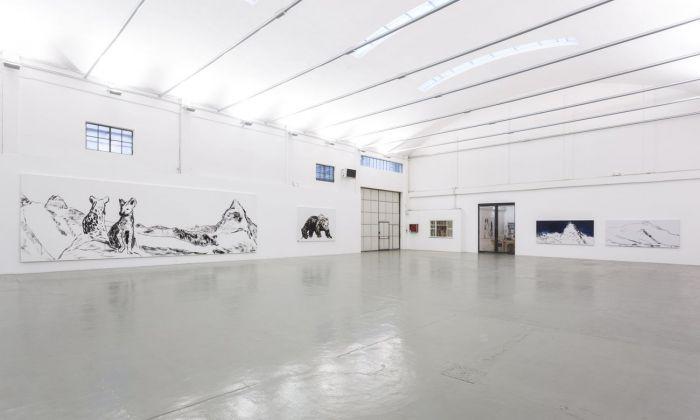 Herbert Brandl. Installation view at Galleria Giorgio Persano, Torino 2017. Photo Nicola Morittu. Courtesy Galleria Giorgio Persano