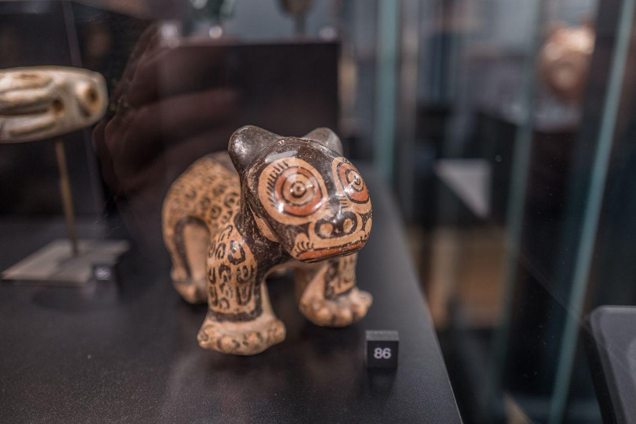 Il mondo che non c'era. Exhibition view at Istituto Veneto di Scienze, Lettere ed Arti, Venezia 2018. Photo (c) Francesca Magnani