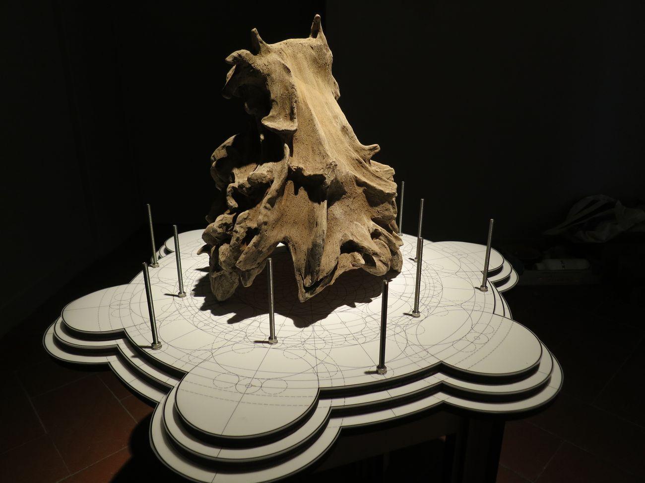 Materia Montelupo. Installation view at Palazzo Podestarile, Montelupo Fiorentino 2017