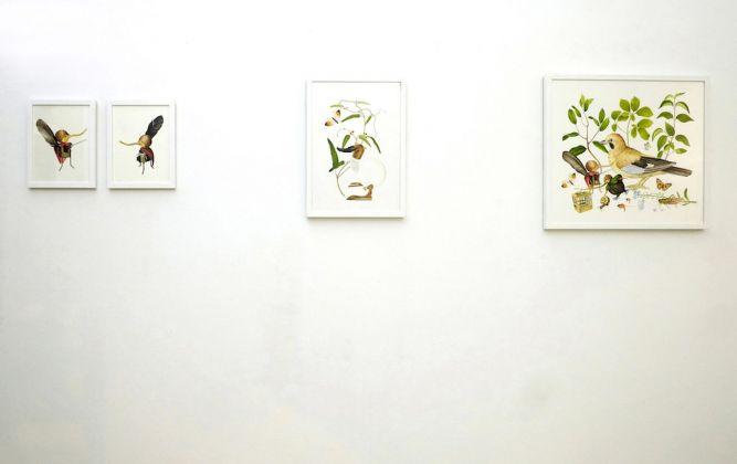 Angelo Maisto. Little Things. Exhibition view at Blu Gallery Arte Contemporanea, Bologna 2018