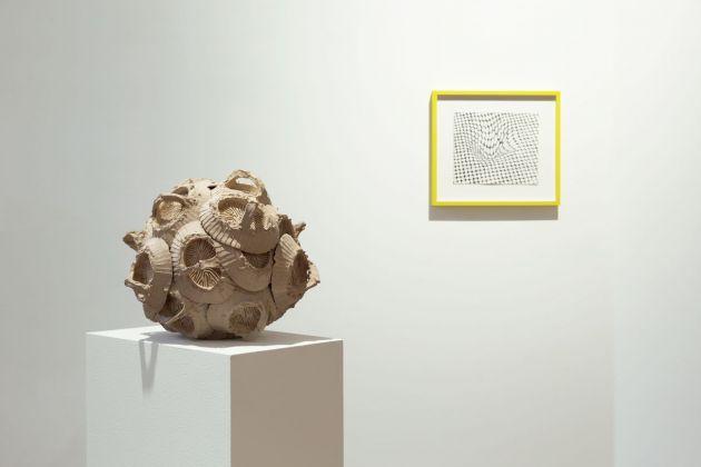 Barbara de Ponti, Gephyrocapsa Oceanica, dalla serie Clay Time Code, 2016. Courtesy Viasaterna, Milano