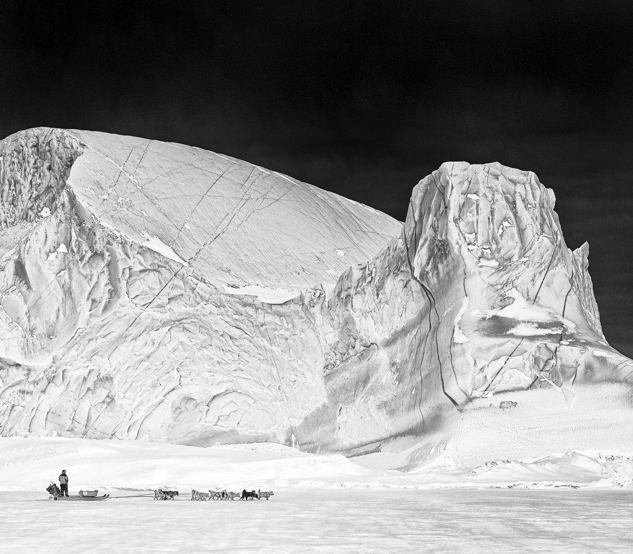 Carsten Egevang © Scoresbysund, Groenlandia, 2012