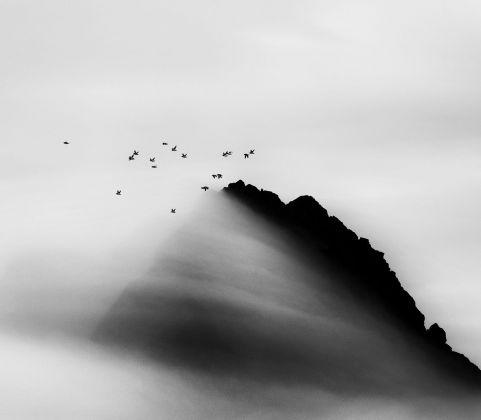 Carsten Egevang © Thule, Groenlandia, 2014