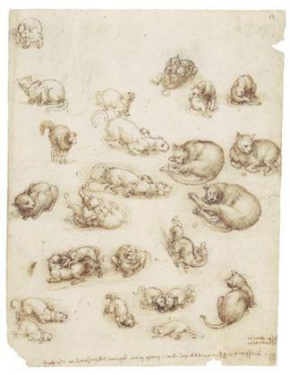 Cats, lions and a dragon, c.1517–18, black chalk, pen and ink, wash