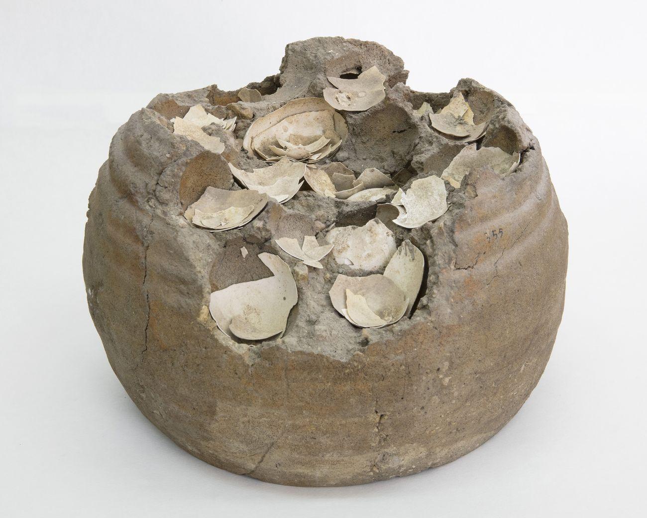 Contenitore con uova conservate nell'argilla, I secolo d.C. Pompei, Casa di Giulio Polibio (IX 13,1 3). Parco Archeologico di Pompei. Photo © Amedeo Benestante