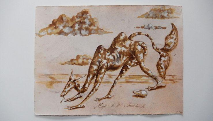 Dario Ghibaudo, Museo di Storia Innaturale. Sala XVIII – Creature Meravigliose