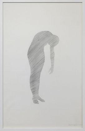 Donatella Spaziani, Senza titolo, 2008