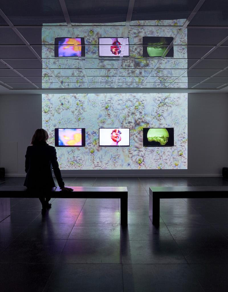 I am here to learn exhibition view, Zach Blas & Jemima Wyman