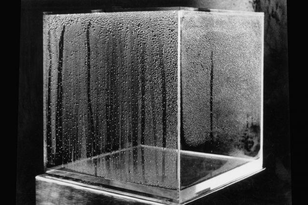 Hans Haacke, Condensation Cube, 1965-2006. MACBA, Barcellona
