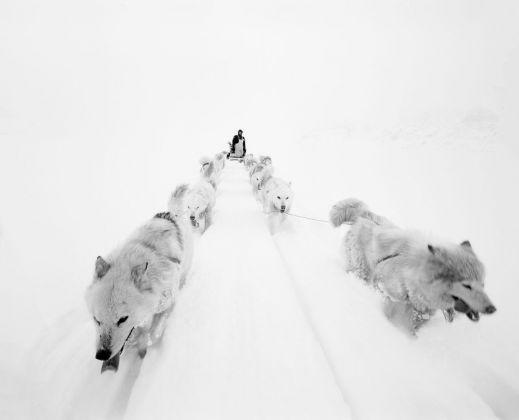 Paolo Solari Bozzi © Sermilik Fjord, Groenlandia 2016