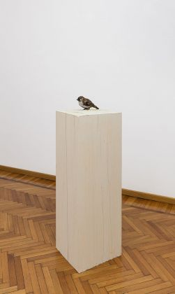 Stephan Balkenhol, Bird, 2017. Courtesy Galleria Monica De Cardenas, Milano. Photo credit Andrea Rossetti