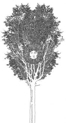 Fernando De Filippi, Arbor Solis 7