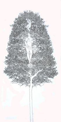 Fernando De Filippi, Arbor Solis 8