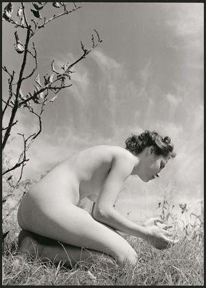 Fulvio Roiter, Nudo n. 5 © Archivio Storico Circolo Fotografico La Gondola Venezia