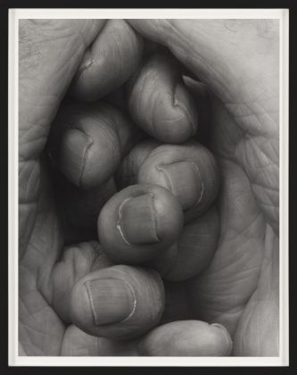 John Coplans, Interlocking Fingers, No 16, 2000 © The John Coplans Trust. Courtesy The John Coplans Trust, Galerie Nordenhake Berlin Stockholm, P420, Bologna