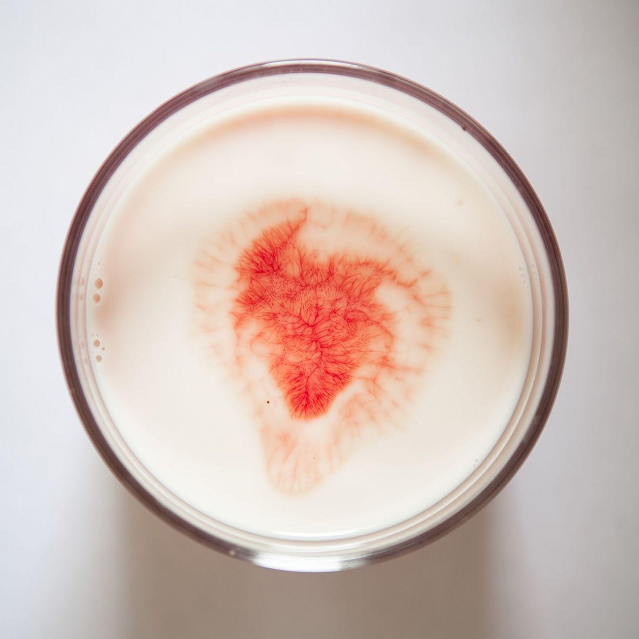 Silvia Bigi, Il sangue e il latte, 2017, dalla serie L'albero del latte