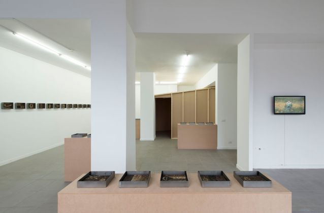 Bertille Bak, All Inclusive Viaggio, exhibition view at The Gallery Apart Roma, photo Giorgio Benni