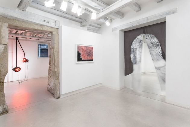 E-merging Nature. Exhibition view at Marignana Arte, Venezia 2018