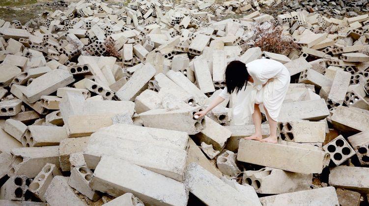Fatma Bucak, Omne vivum ex ovo – Nomologically possible anyhow, 2013. Still da video