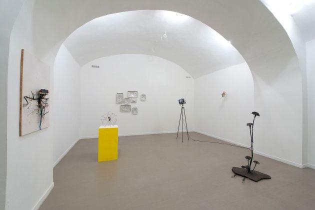 Hidden Beauty. Installation view at z2o Sara Zanin Gallery, Roma 2018. Courtesy z2o Sara Zanin Gallery, Roma. Photo Giorgio Benni