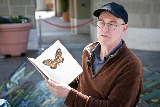 Julian Beever, Dancing Butterflies in Rome, McArthurGlen Designer Outlet di Castel Romano