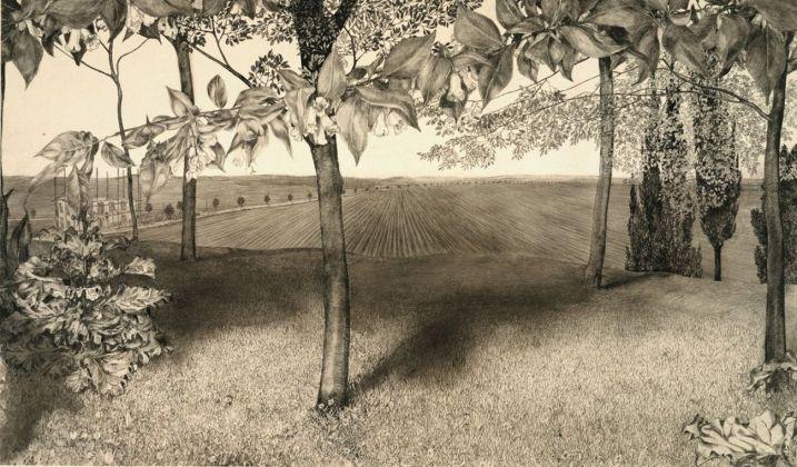 Klemens Brosch, Weigelia fiorita, 1912 © Graphic arts collection, Landesgalerie Linz, Upper Austrian State Museum