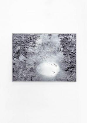 Mariella Bettineschi, L'Era successiva Natura, 2012