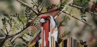 Maurizio Bongiovanni, Bird rib #02 (goldfinchs), 2014