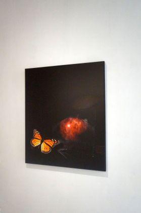 Mottenwelt I. CJ Taylor. Installation view at Galleria Marcolini, Forlì 2018