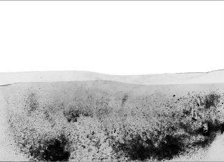 Natale Zoppis, Rumori di paesaggi in polvere, 2017