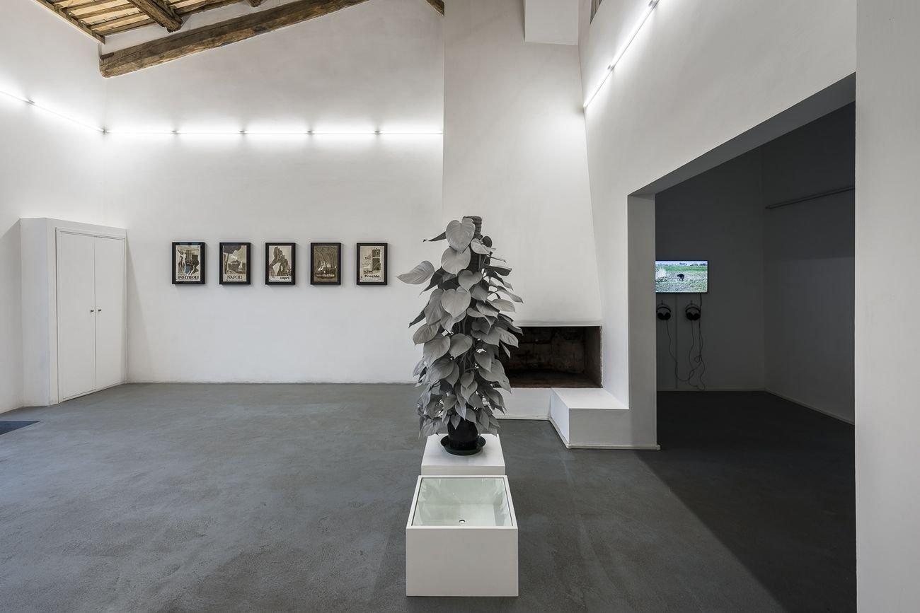 Paradiso. Exhibition view at AlbumArte, Roma 2018