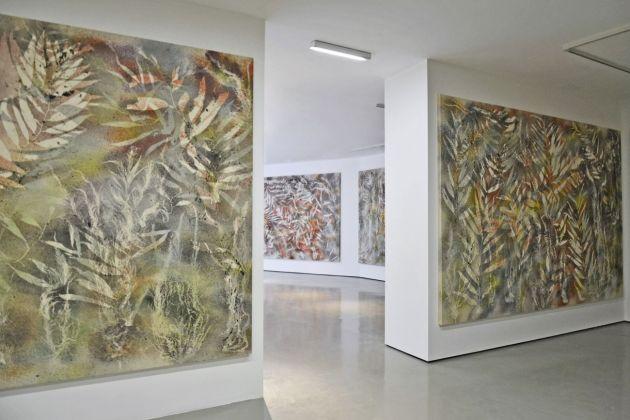 Sam Falls. Nature Is the New Minimalism. Exhibition view at Galleria Civica, Trento 2018. Photo Mart, Bianca Lampariello