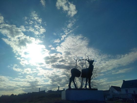 Stief DeSmet, Monument for Cervus Vitalis #2 (Malus Sylvestris), 2015, Adinkerke, De Panne. Photo Daniele Perra